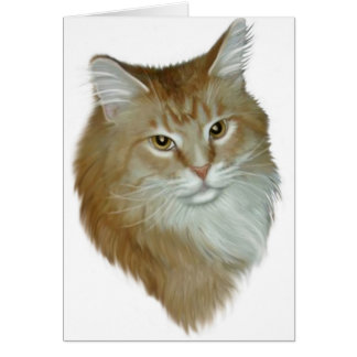 Red Tabby Maine Coon Card