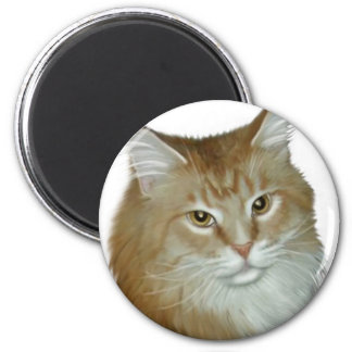 Red Tabby Maine Coon Magnet