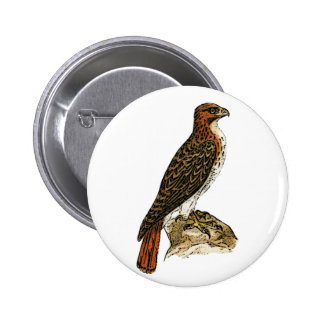 Red Tail Hawk 6 Cm Round Badge