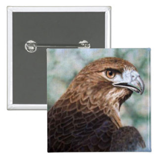 Red-tail Hawk airbrush 15 Cm Square Badge