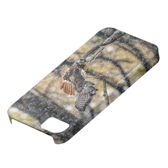 Red Tail Hawk in the Snow iPhone Case