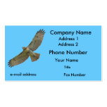 red-tail soaring pack of standard business cards