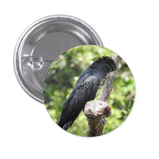 Red-Tailed Black Cockatoo Badge