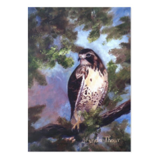Red Tailed Hawk Art Card Pack Of Chubby Business Cards