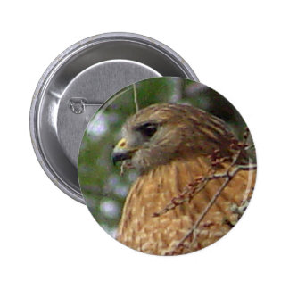Red Tailed Hawk Button 2