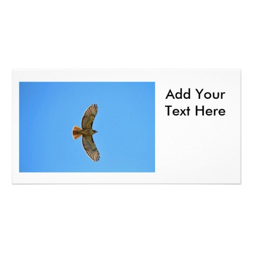 Red-Tailed Hawk in Flight Customized Photo Card