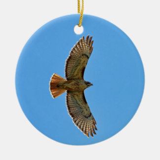 Red-Tailed Hawk in Flight Round Ceramic Decoration