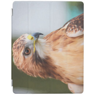 Red Tailed Hawk iPad Cover