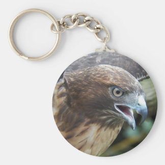 Red-Tailed Hawk Metal Key Chain