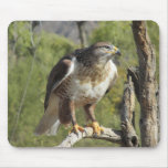 Red Tailed Hawk Mousepad