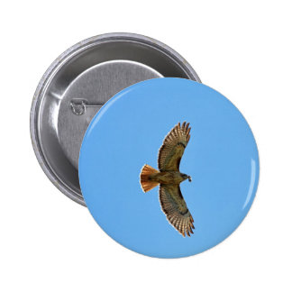 Red-Tailed Hawk Photo 6 Cm Round Badge