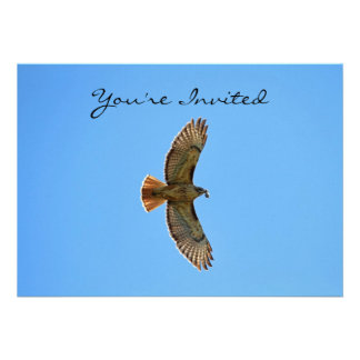 Red-Tailed Hawk Photo Personalized Announcement