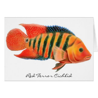Red Terror Cichlid Greeting Card