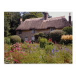 Red Thomas Hardy's cottage, Dorset, England flower Postcards