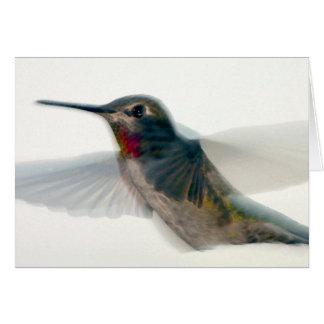 Red-Throated Hummingbird Greeting Card