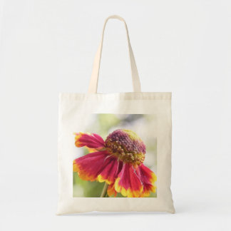 Red Tinged Helenium Flower Budget Tote Bag
