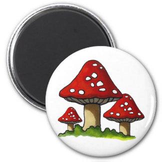 Red Toadtstools, Mushroom: Freehand Art Magnet