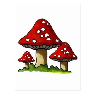 Red Toadtstools, Mushroom: Freehand Art Postcard
