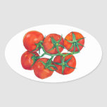 Red Tomatoes Oval Sticker