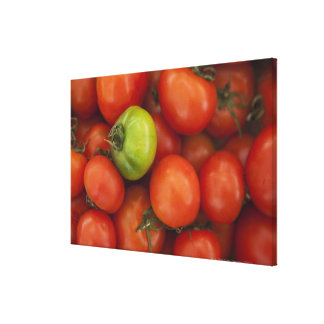 red tomatoes with one green one for sale at the canvas print