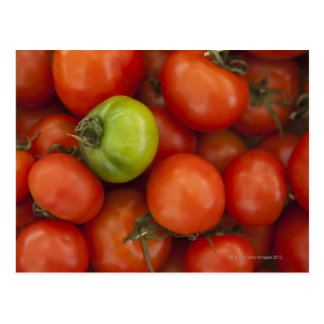red tomatoes with one green one for sale at the postcard