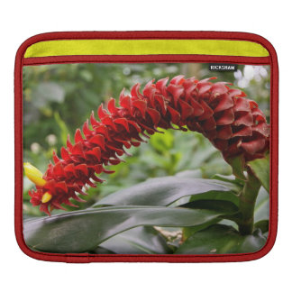 Red Tower Ginger iPad Sleeve (or for macbook air)
