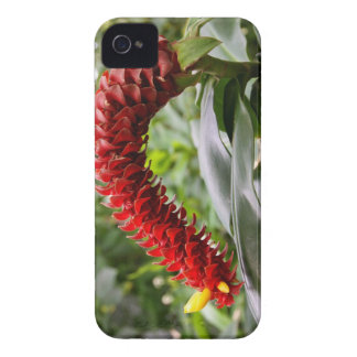Red Tower Ginger iPhone 4 Barely There Case-Mate iPhone 4 Cases