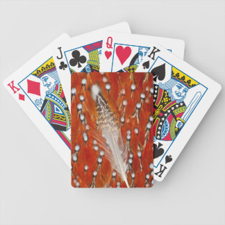 Red Tragopan Feathers Bicycle Playing Cards