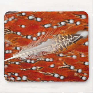 Red Tragopan Feathers Mouse Mat