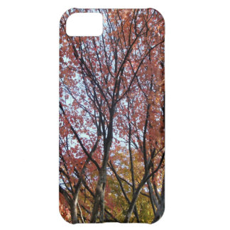 Red Tree iPhone 5C Case