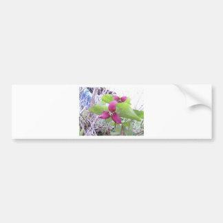 Red Trilliums Bumper Sticker