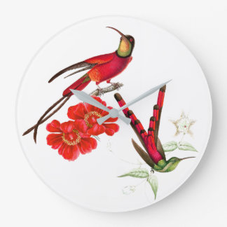 Red Tropical Hummingbird Birds Floral Wall Clock