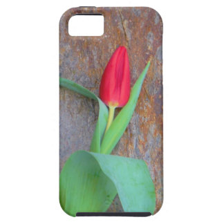 Red Tulip Brown Stone Wall Tough iPhone 5 Case