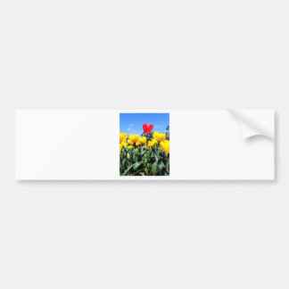 Red Tulip Bumper Sticker