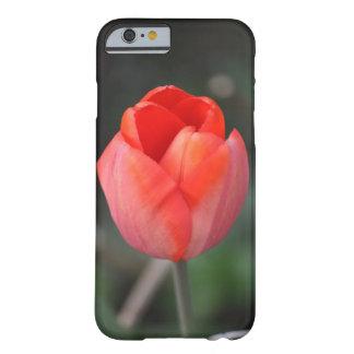Red tulip case