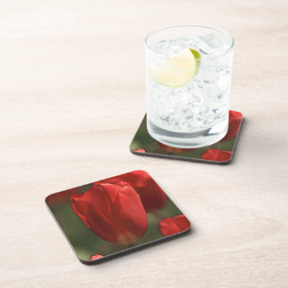 Red Tulip Flower Cork Coaster