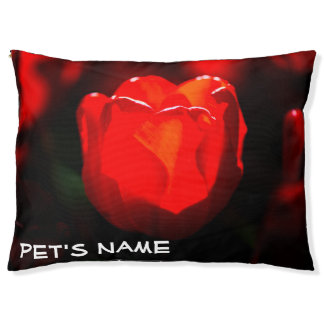 Red Tulip Flower - Fire Pet Bed