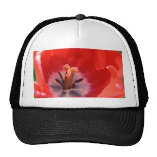 Red tulip mesh hat