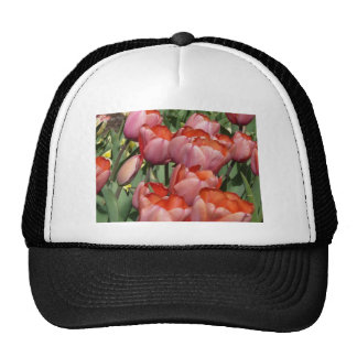 red tulip mesh hats
