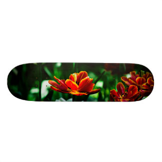 Red Tulip - His Majesty the King Skate Board
