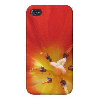 Red tulip iPhone 4 cover