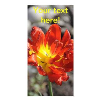 Red tulip custom photo card