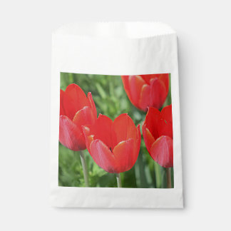 Red tulip photo favour bags