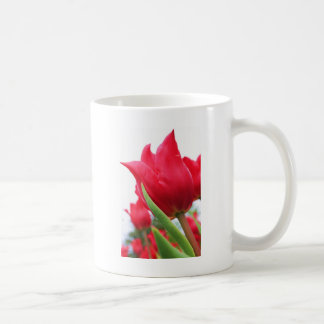 Red Tulip Photo Coffee Mugs