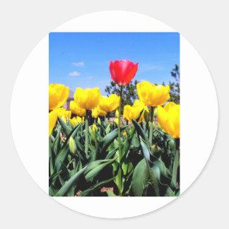 Red Tulip Round Sticker