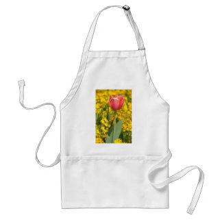 Red tulip standard apron