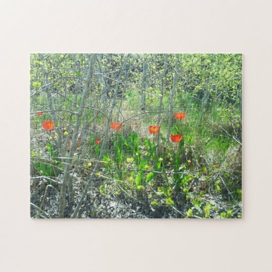 Red Tulips Aspen Trees Jigsaw Puzzle | Challenging