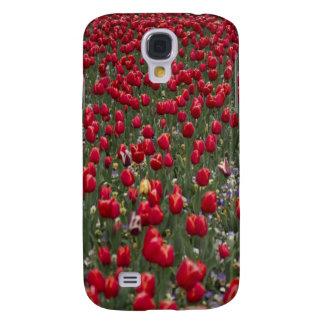 Red Tulips Blackberry Case