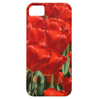 Red Tulips iPhone 5/5S Case