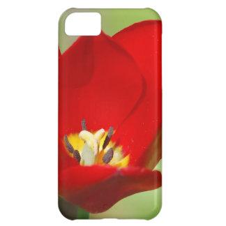 Red Tulips iPhone 5C Case